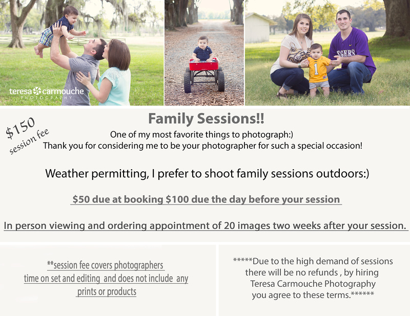 FAMILY session price guide