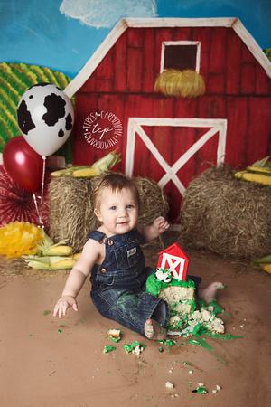 1-20-18_,Baton Rouge Baby Photographer_brody cake smash 2651,teresa carmouche photography,cake smash, photoshoot, one year photoshoot, baton rouge baby photographer, new orleans baby photographer, ado