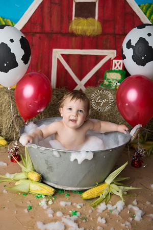 1-20-18_,Baton Rouge Baby Photographer_brody cake smash 2655,teresa carmouche photography,cake smash, photoshoot, one year photoshoot, baton rouge baby photographer, new orleans baby photographer, ado