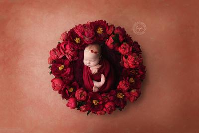 20190105_7343-best newborn photographer-Baton rouge newborn photographer-newborn-new orleans newborn photographer, newborn safety, newborn posing-Baton rouge Maternity Photographer-Baton Rouge Newborn