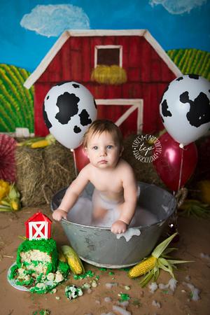 1-20-18_,Baton Rouge Baby Photographer_brody cake smash 2663,teresa carmouche photography,cake smash, photoshoot, one year photoshoot, baton rouge baby photographer, new orleans baby photographer, ado