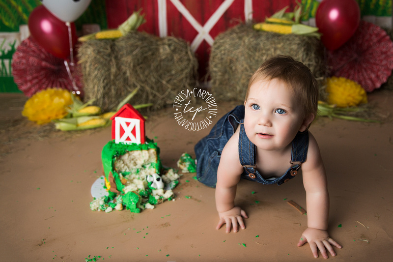 1-20-18_, Baton Rouge Baby Photographer_brody cake smash 2649,teresa carmouche photography,cake smash, photoshoot, one year photoshoot, baton rouge baby photographer, new orleans baby photographer, ad